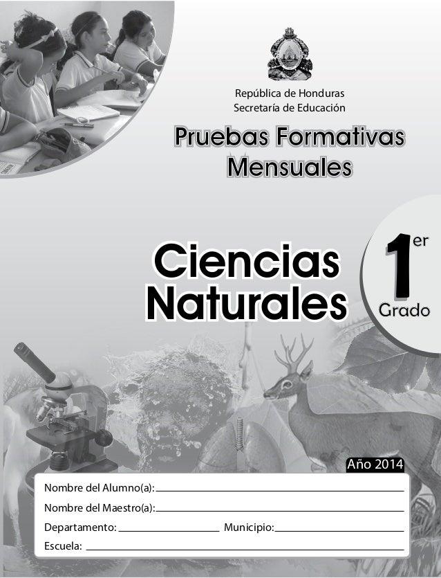 República de Honduras Secretaría de Educación Pruebas Formativas Mensuales Pruebas Formativas Mensuales 11Grado er Ciencia...