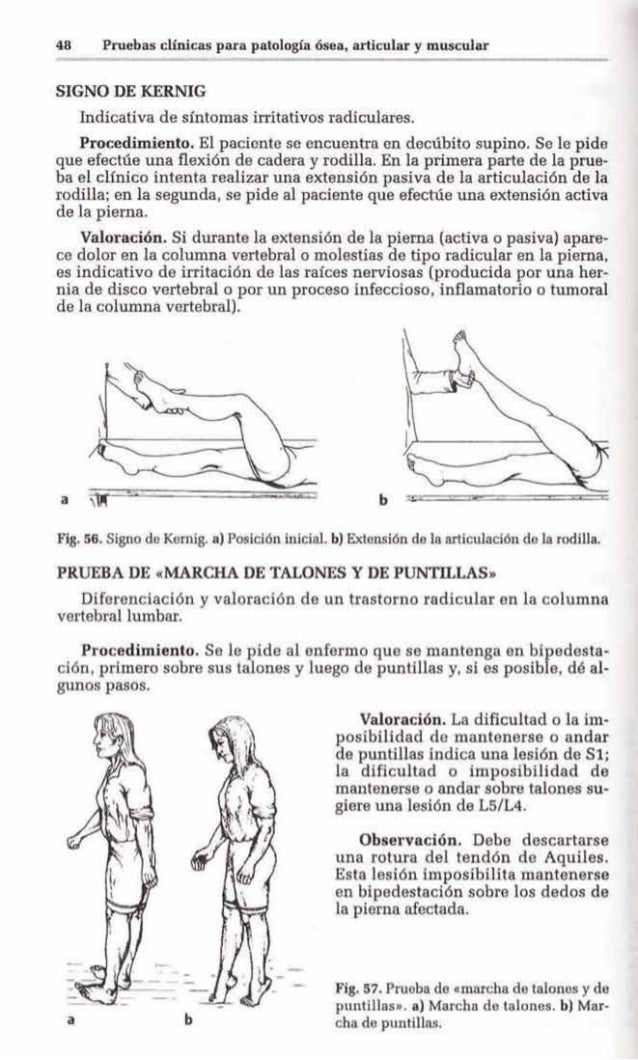 Pruebas Clnicas Para Patologa Sea Articular Y Muscular Exploraci