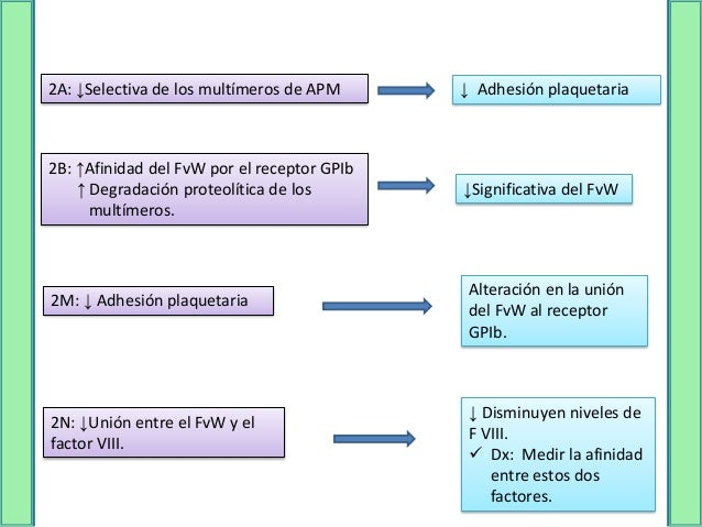 TIPO III   Defecto cuantitativo grave   Deficiencia del factor entre el 1-9 UI/dL   Clínicamente similar a la hemofilia...