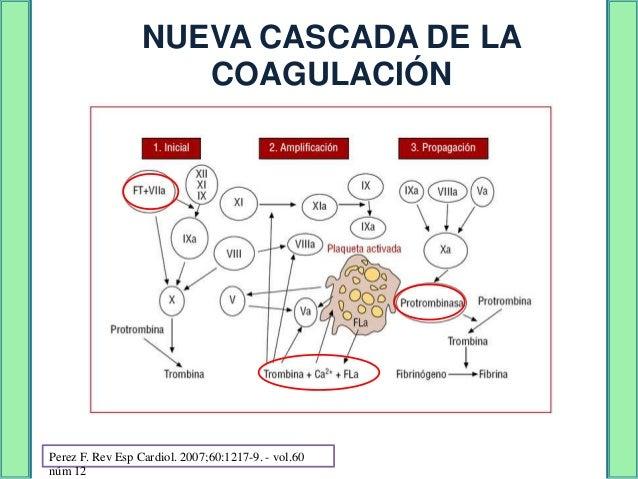Primaria                                     Secundaria         Recuento de plaquetas, los tiempos de      coagulación y p...