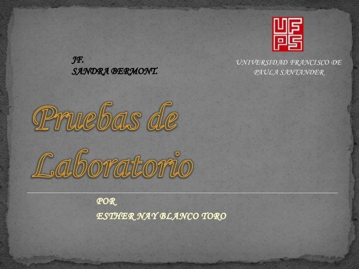Pruebas de Laboratorio<br />JF.<br />SANDRA BERMONT.<br />UNIVERSIDAD FRANCISCO DE PAULA SANTANDER<br />POR <br />ESTHER N...