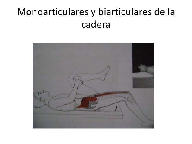 Metafisica dolor de espalda