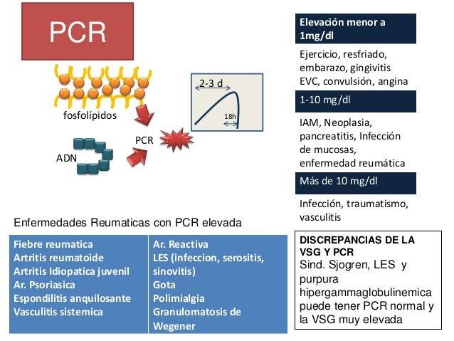 Anemia Policitemia Velocidad de agregación de los eritrocitos VSG Se define como la velocidad, expresada en mm. con la que...