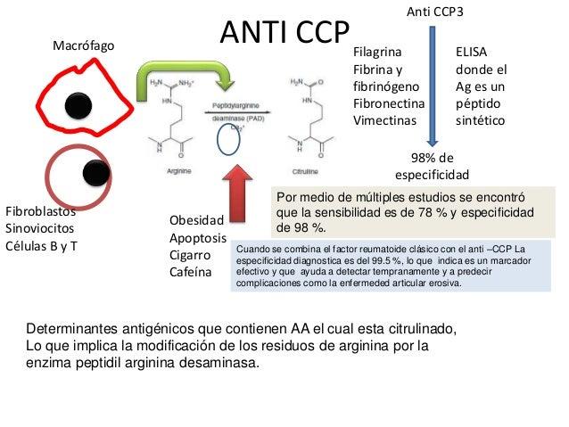Anticuerpos antinucleares (ana) Diferentes componentes nucleares (DNA,antígenos nucleares extractables (ENA), histonas, RN...