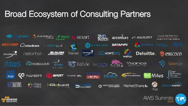 Broad Ecosystem of Consulting Partners