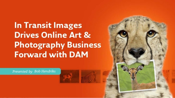 In Transit ImagesDrives Online Art &Photography BusinessForward with DAMPresented by Bob Hendriks