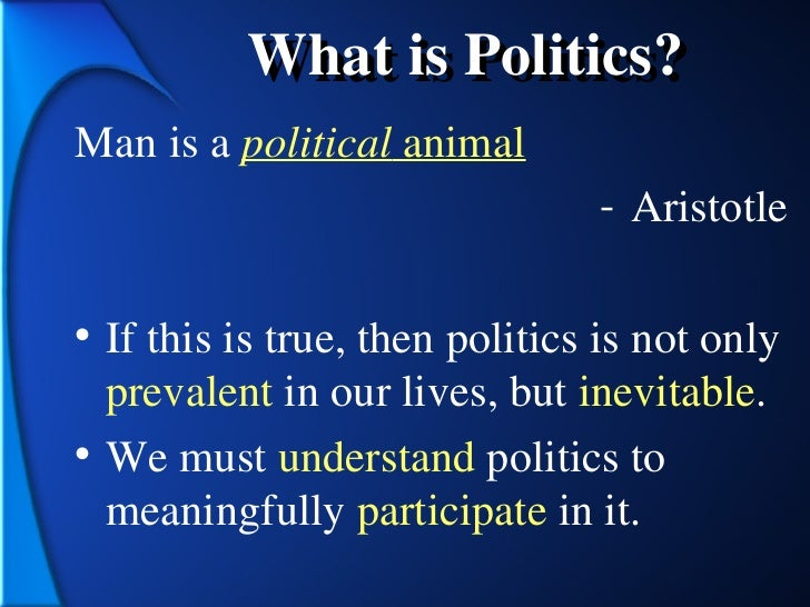 what do you understand by the term politics