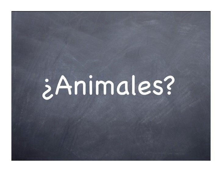 ¿Animales?