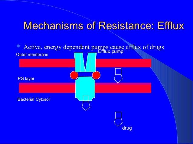 pseudomonas aeruginosa antibiotic resistance pdf