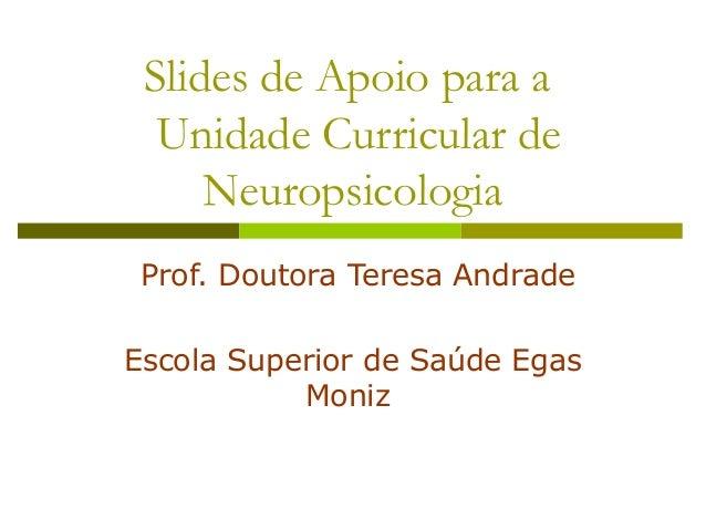 Slides de Apoio para a Unidade Curricular de Neuropsicologia Prof. Doutora Teresa Andrade Escola Superior de Saúde Egas Mo...