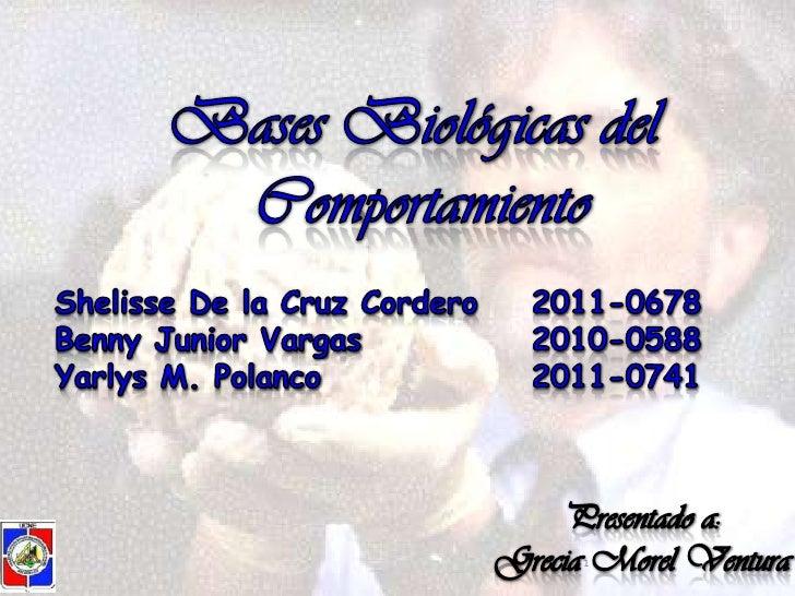 Bases Biológicas del <br />Comportamiento<br />Shelisse De la Cruz Cordero2011-0678<br />Benny Junior Vargas2010-0588<...