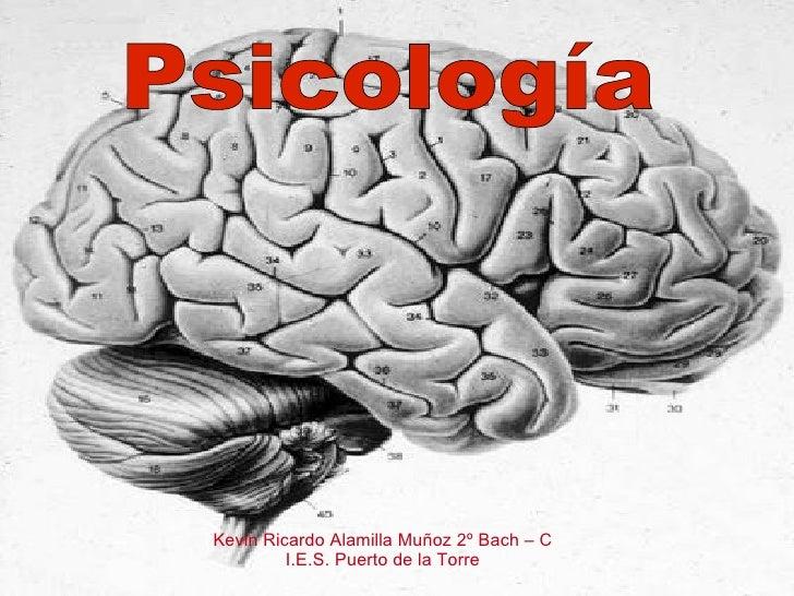 Psicología Kevin Ricardo Alamilla Muñoz 2º Bach – C I.E.S. Puerto de la Torre