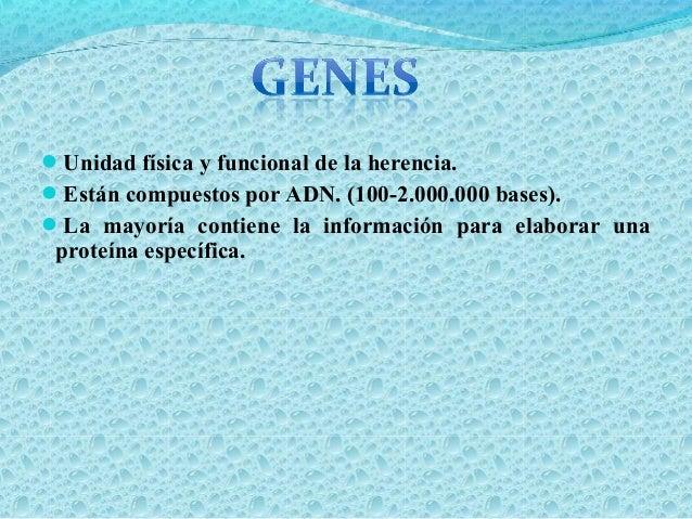  Son genes incluidos en el genoma humano que favorecen la expresión de proteínas que regulan el crecimiento y diferenciac...