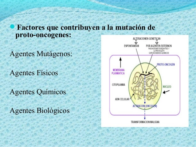 Agentes biológicos: Virus DNA Virus RNA (Retrovirus) Factores de crecimiento.