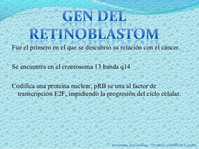 Se encuentra en el brazo corto del cromosoma 17 banda 13. Mutaciones son por sustitución/delección. Regulación del cicl...