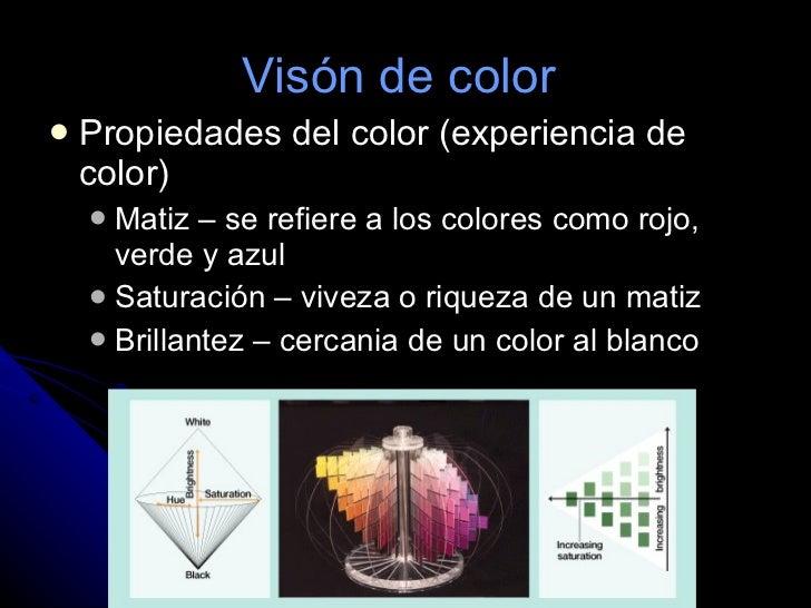 Visón de color  <ul><li>Propiedades del color (experiencia de color)  </li></ul><ul><ul><li>Matiz – se refiere a los color...