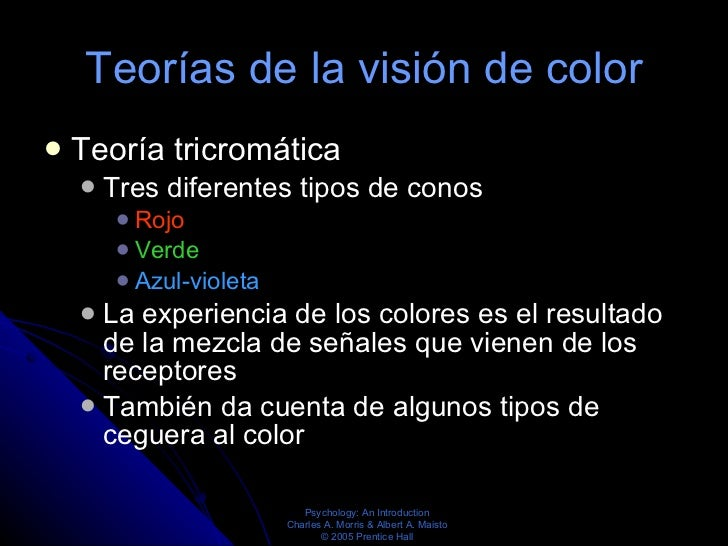 Teorías de la visión de color <ul><li>Teoría tricromática  </li></ul><ul><ul><li>Tres diferentes tipos de conos  </li></ul...
