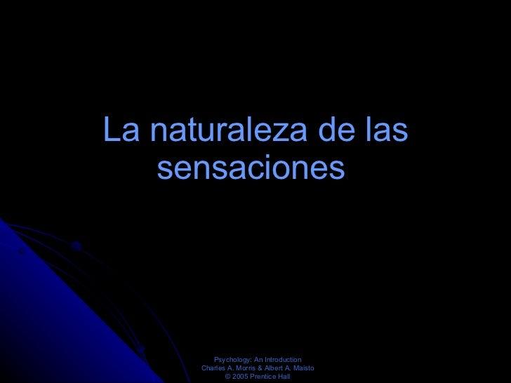 La naturaleza de las sensaciones