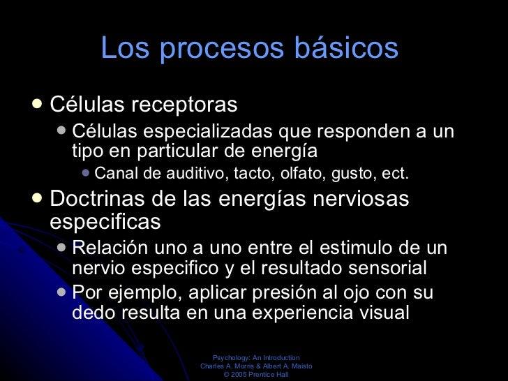 Los procesos básicos   <ul><li>Células receptoras </li></ul><ul><ul><li>Células especializadas que responden a un tipo en ...