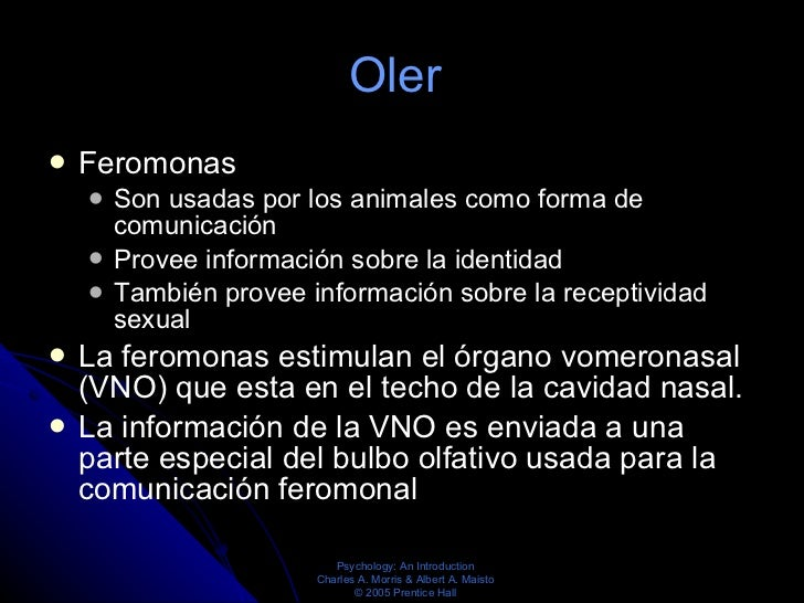 Oler  <ul><li>Feromonas  </li></ul><ul><ul><li>Son usadas por los animales como forma de comunicación  </li></ul></ul><ul>...