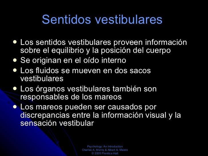 Sentidos vestibulares   <ul><li>Los sentidos vestibulares proveen información sobre el equilibrio y la posición del cuerpo...
