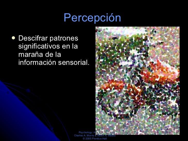Percepción  <ul><li>Descifrar patrones significativos en la maraña de la información sensorial. </li></ul>