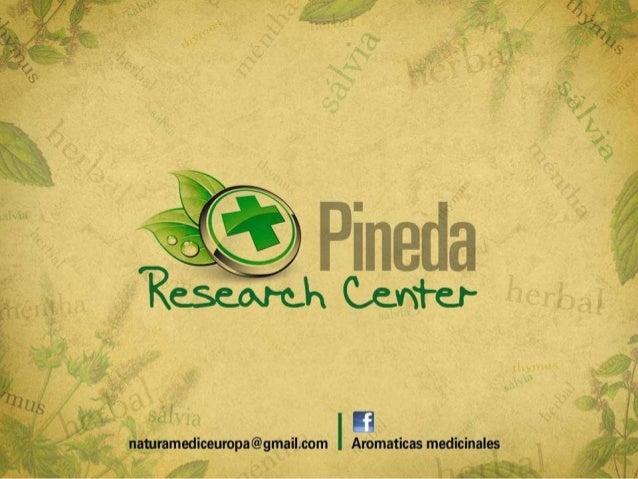 PSICOLOGIA DE LOS ACEITESESENCIALES¿QUE NOS RECUERDAN LOS OLORES?naturamediceuropa@gmail.com Aromaticas Medicinales