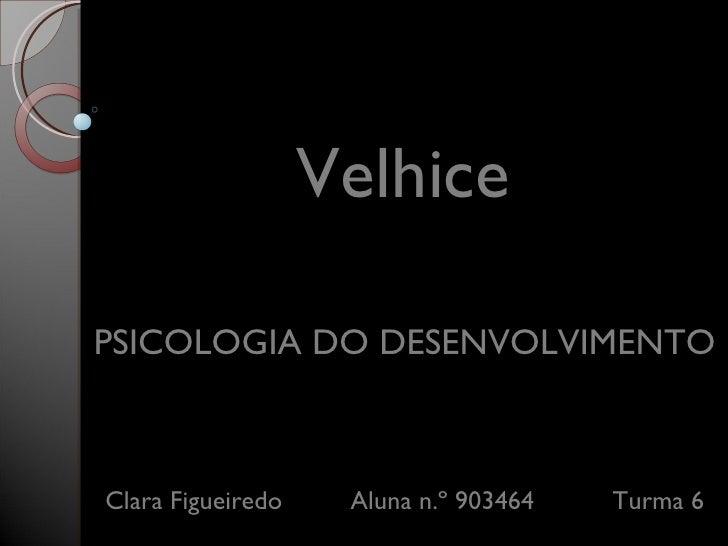 Velhice Clara Figueiredo    Aluna n.º 903464   Turma 6 PSICOLOGIA DO DESENVOLVIMENTO
