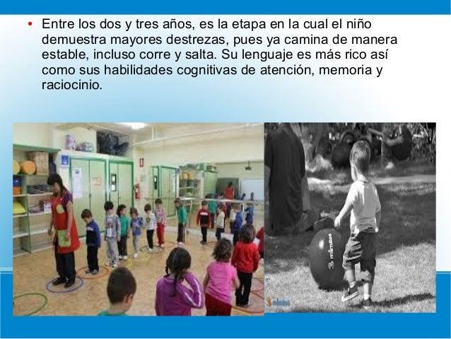 ● Entre los dos y tres años, es la etapa en la cual el niño demuestra mayores destrezas, pues ya camina de manera estable,...