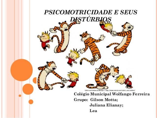 PSICOMOTRICIDADE E SEUS DISTÚRBIOS Colégio Municipal Wolfango Ferreira Grupo: Gilson Motta; Juliana Elianay; Lea