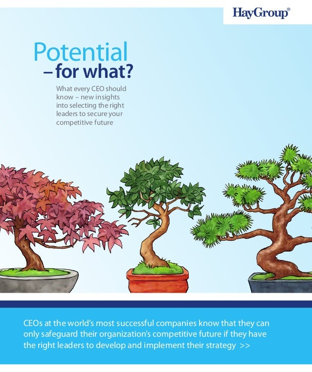 Potential     – for what?        What every CEO should        know – new insights        into selecting the right        l...
