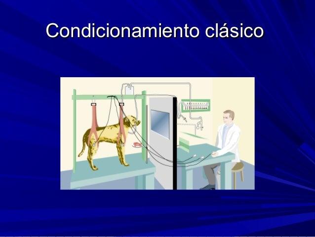 Condicionamiento clásicoCondicionamiento clásico