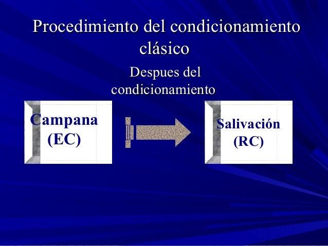 Procedimiento del condicionamientoProcedimiento del condicionamiento clásicoclásico Despues delDespues del condicionamient...