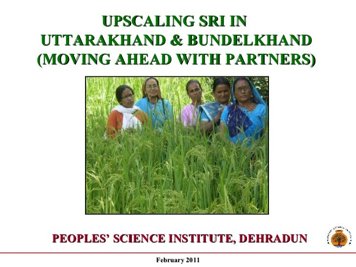 UPSCALING SRI IN  UTTARAKHAND & BUNDELKHAND  (MOVING AHEAD WITH PARTNERS)  - A Progress Report - PEOPLES' SCIENCE INSTITUT...