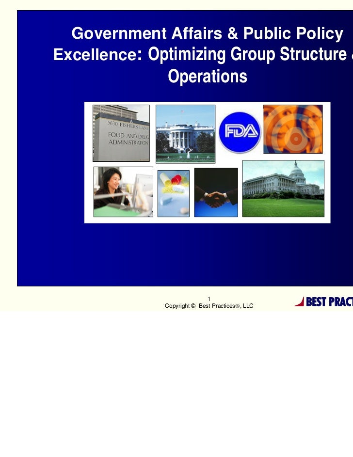 Government Affairs & Public PolicyExcellence: Optimizing Group Structure &              Operations                        ...