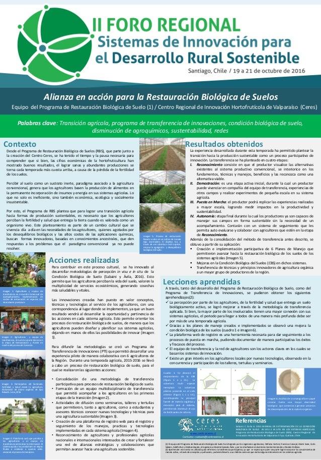 Alianza en acción para la Restauración Biológica de Suelos Palabras clave: Transición agrícola, programa de transferencia ...