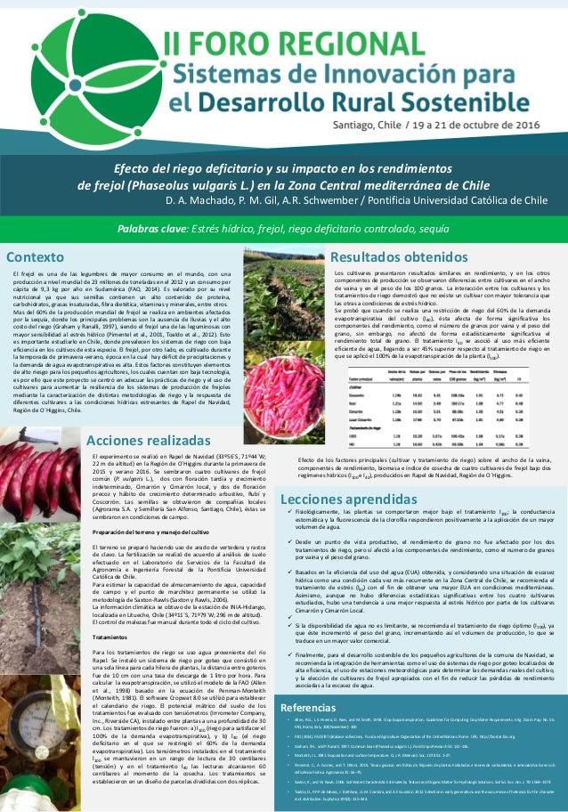 Efecto del riego deficitario y su impacto en los rendimientos de frejol (Phaseolus vulgaris L.) en la Zona Central mediter...