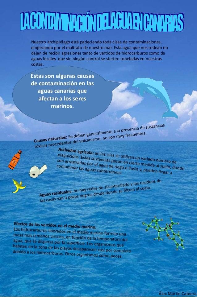Nuestro archipiélago está padeciendo toda clase de contaminaciones, empezando por el maltrato de nuestro mar. Esta agua qu...