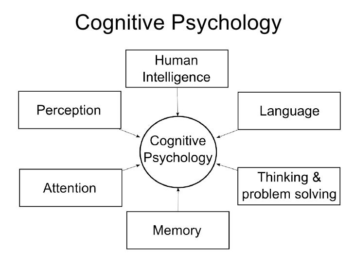 psychology cognitive processes studying cognition <ul><li>cognitive science