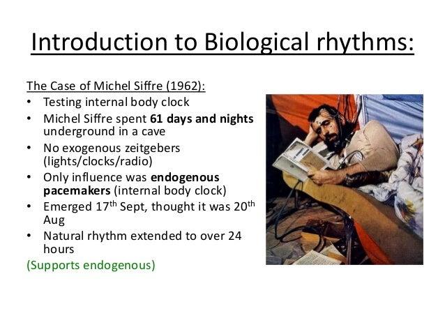 disruption of biological rhythms essay Discuss the consequences of disrupting biological rhythms essay  the disruption of biological rhythms 24m one example of disruption of biological rhythms is due .