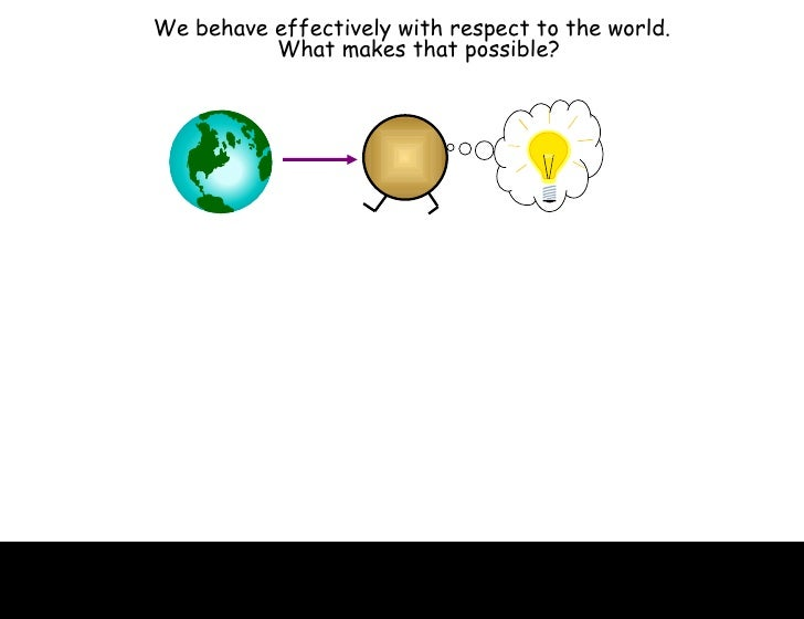 We behave effectively with respect to the world.  What makes that possible?