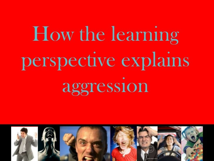 How the learning perspective explains aggression<br />
