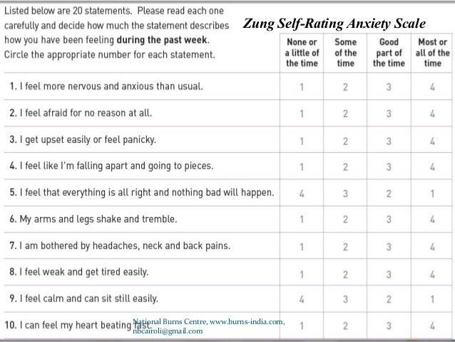 burn specific health scale pdf