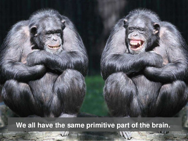 We all have the same primitive part of the brain.