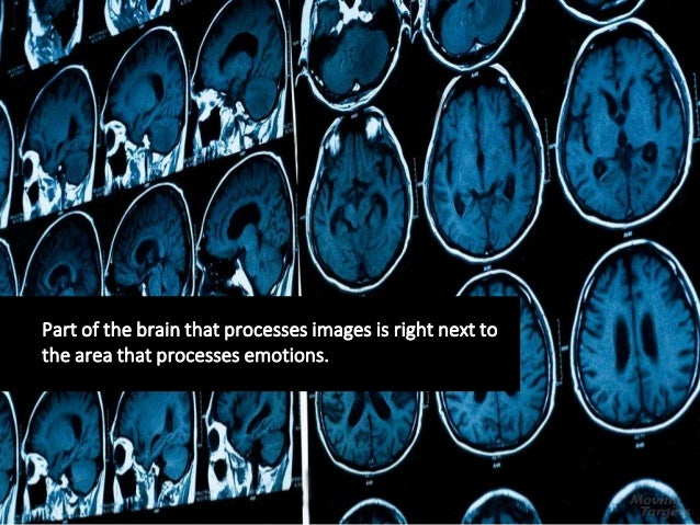 Part of the brain that processes images is right next to the area that processes emotions.