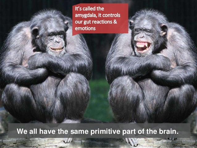We all have the same primitive part of the brain. It's called the amygdala, it controls our gut reactions & emotions