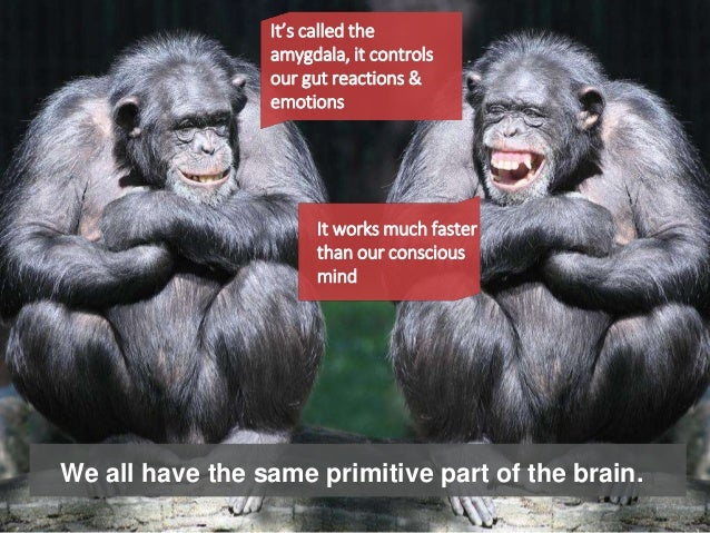 We all have the same primitive part of the brain. It's called the amygdala, it controls our gut reactions & emotions It wo...