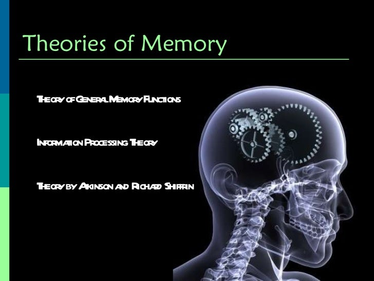 how long term memory works in human beings Psychology 111 chapter 8  explain how psychologists describe the human memory system  short-term memory, and long-term memory this model has since been.