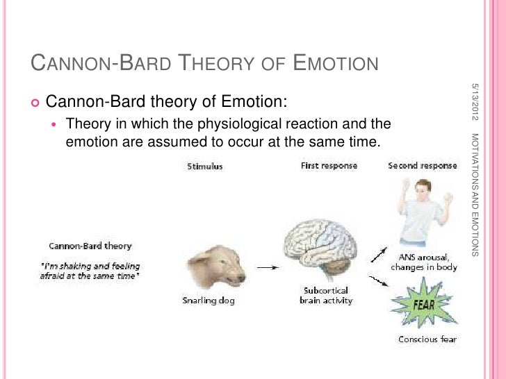 cannon bard theory definition