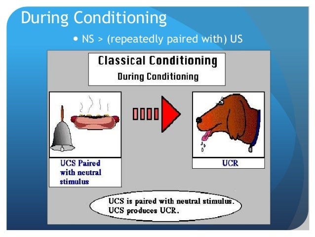 major types of conditioning This tutorial describes common types of home heating including forced air, hot water baseboard, radiant heat, steam heat, and geothermal.